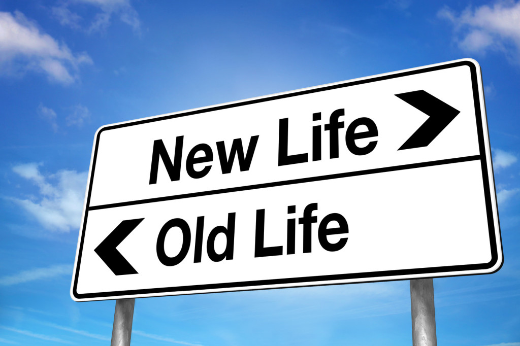 New Life/Old Life Road Sign